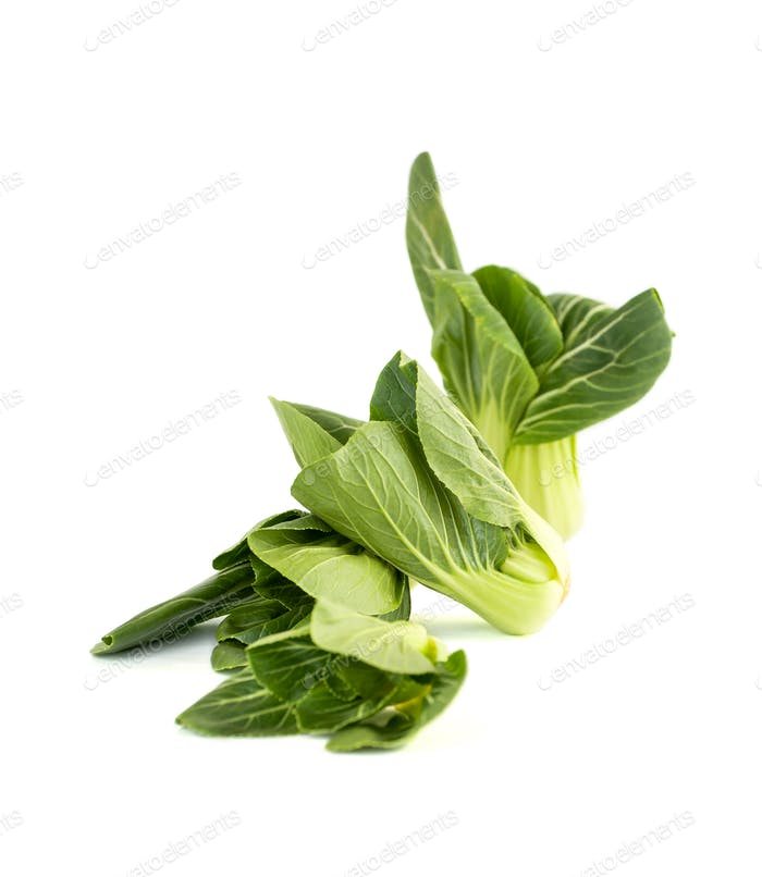 Salad Pak-choi (Chinese cabbage) on a clean white background. Is
