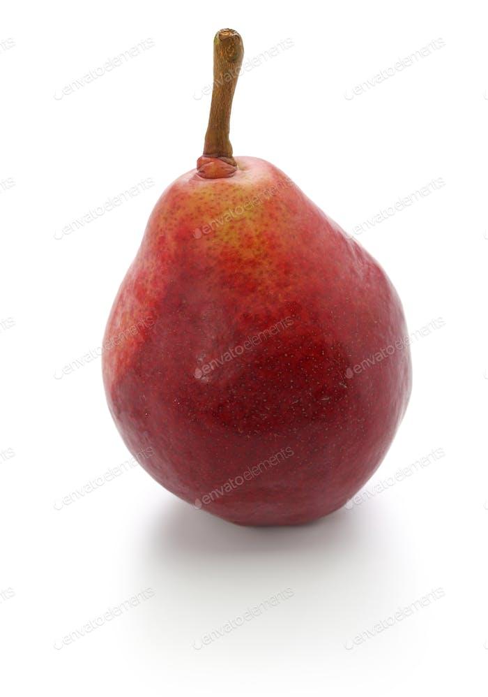 red pear, star crimson