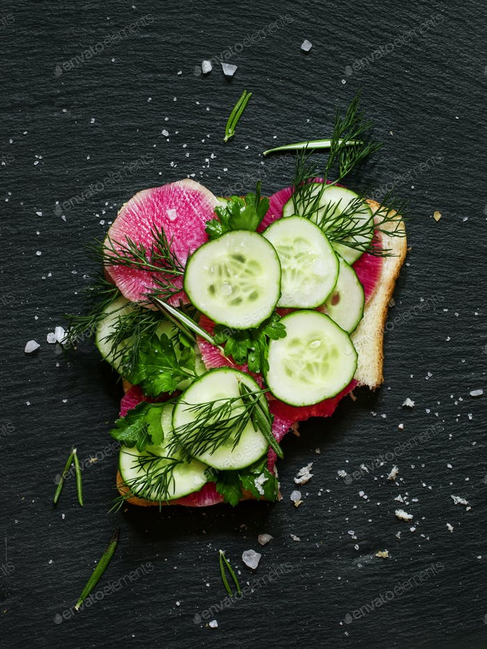Square vegan sandwich with cucumber, radish
