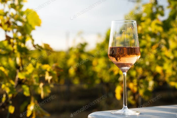 glass of rose wine on a table in the vineyard with blue sky