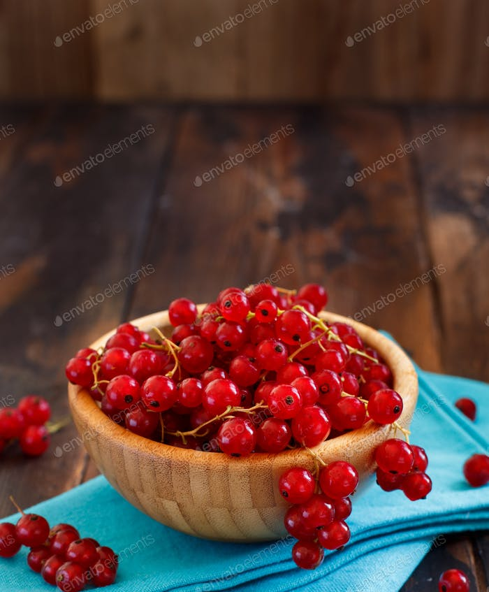 Ripe red currant berries