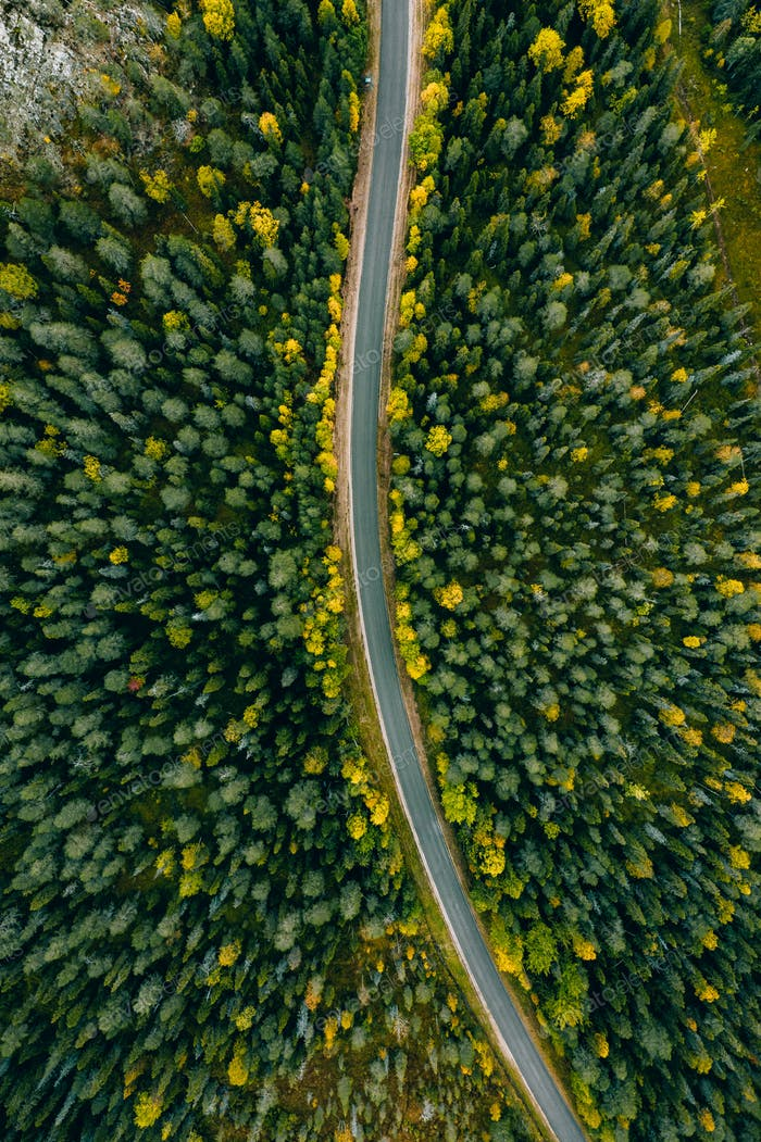 Aerial view of curve road and colorful autumn forest in Finland.