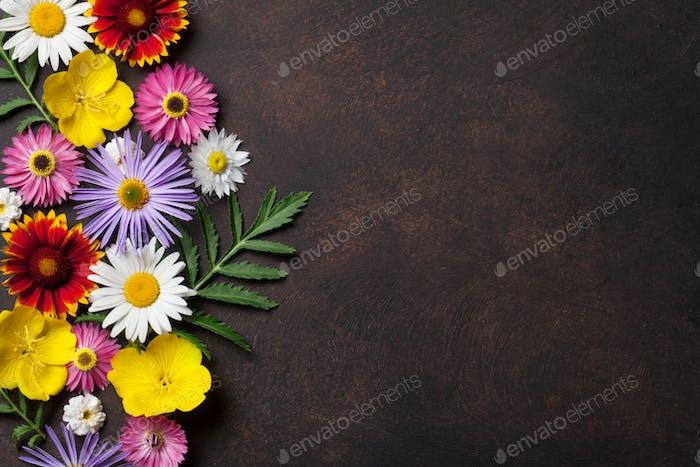 Garden flowers on stone