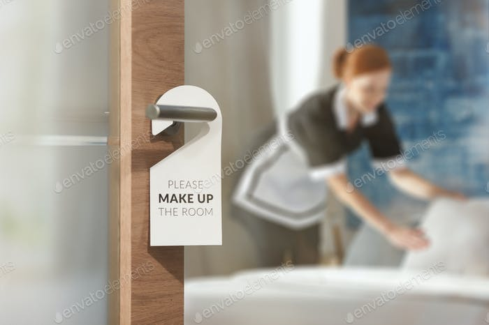 Housemaid cleaning room
