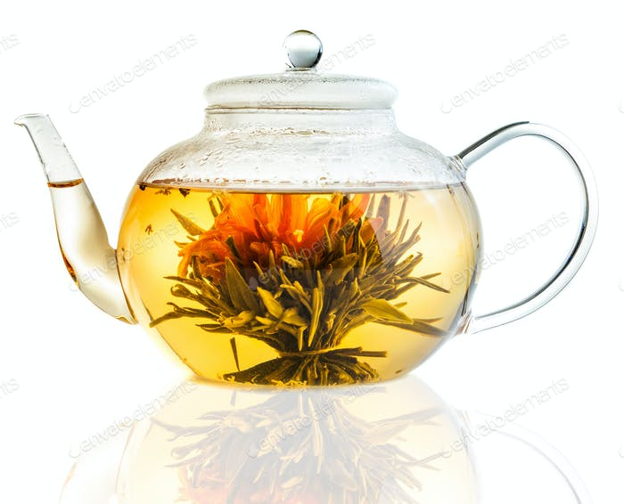 Tea Flower in a Clear Teapot