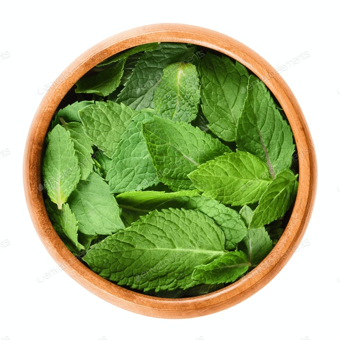 Fresh peppermint leaves in wooden bowl