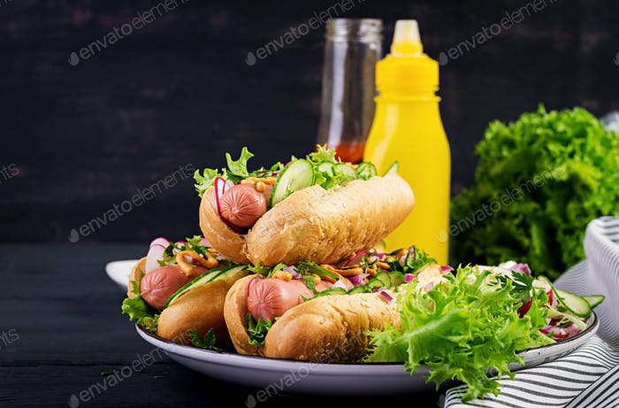 Hot Dog mit Wurst, Gurke, Rettich und Salat auf dunklem Holzhintergrund. Sommerhotdog.