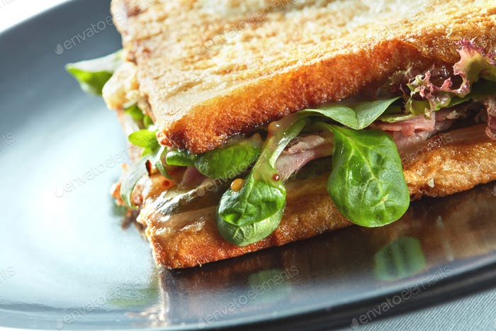 Fresh toasted panini blt sandwich
