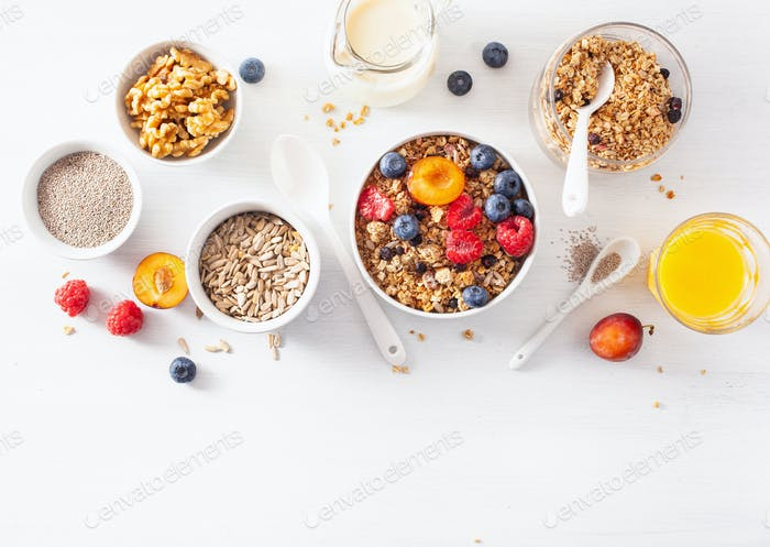 gesundes Müsli zum Frühstück mit Beerenfruchtnuss, vegane Milch