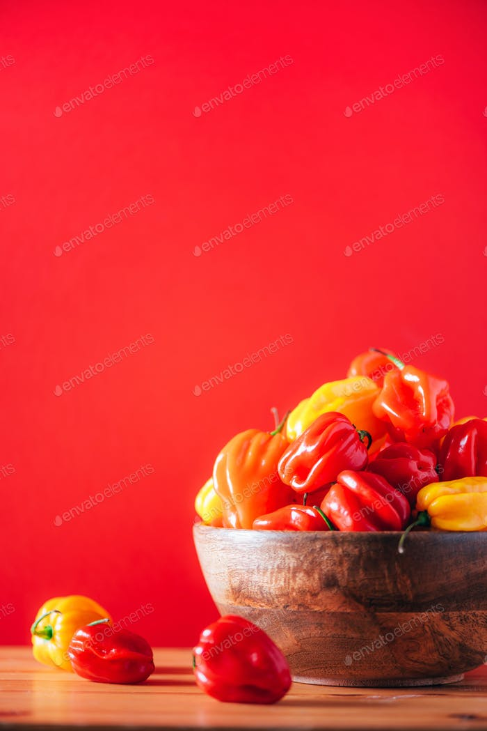Yellow and red scotch bonnet chili peppers in wooden bowl over red background. Copy space
