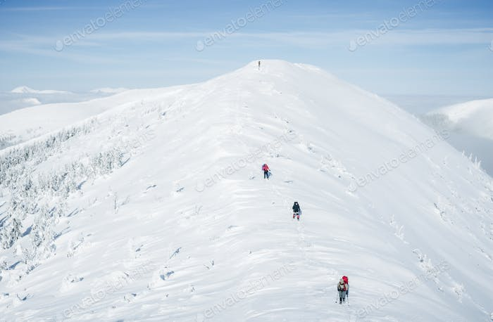 Scenic View of Winter Carpathian Gorgany Mountains and Determined Climbers