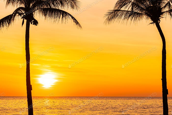 Beautiful landscape of sea ocean with silhouette coconut palm tree