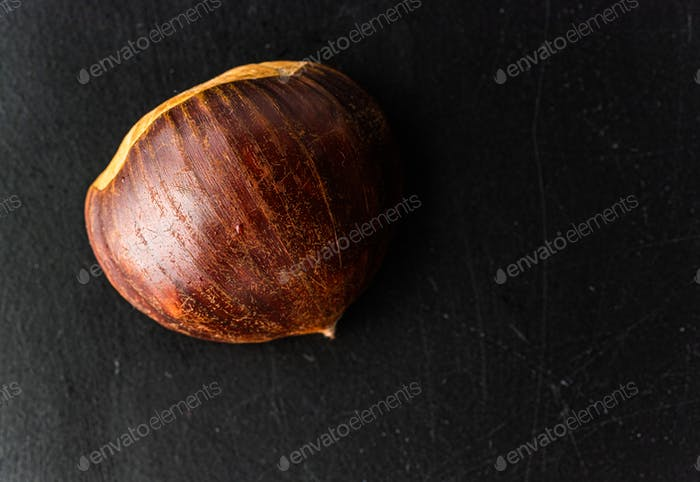 Fresh one chestnut isolated on black background