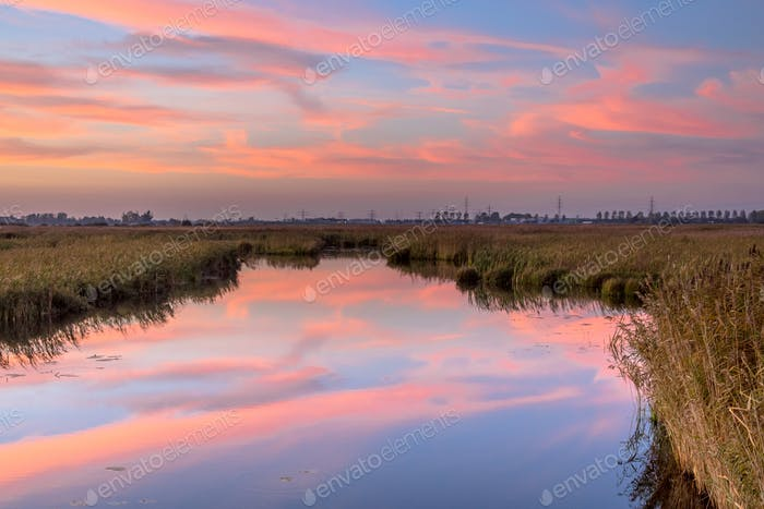 River through marshland