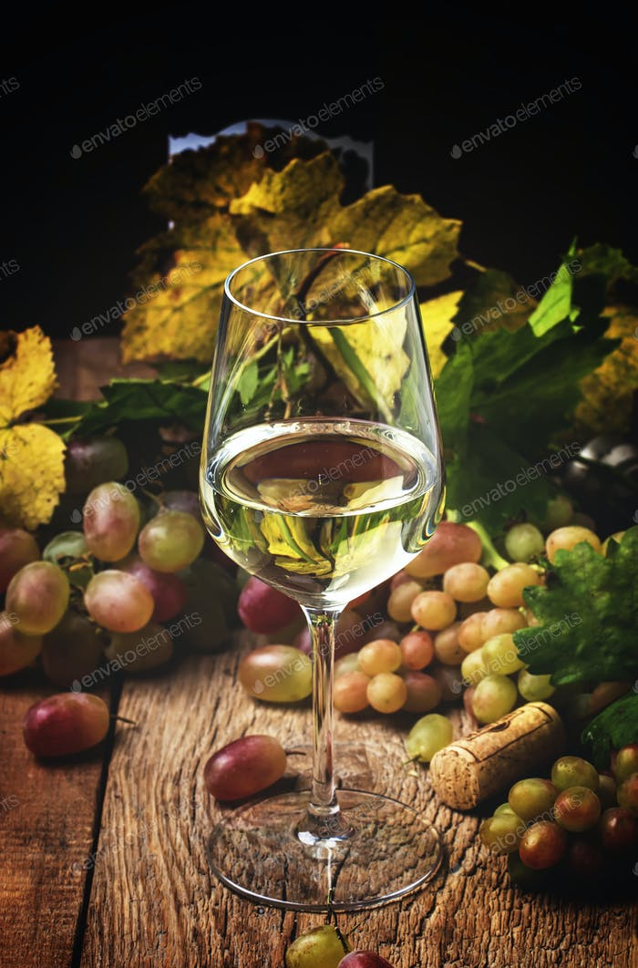 Dry white wine in glass, rustic still life