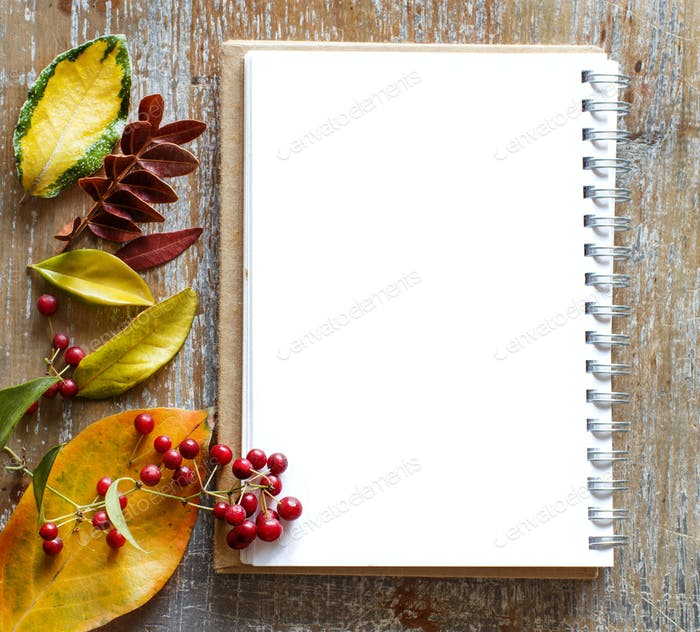 Autumn  leaves and notebook