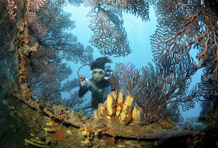 Wreck of a ship sunk intentionally as an artificial reef. A scuba diver with a flashlight exploring.