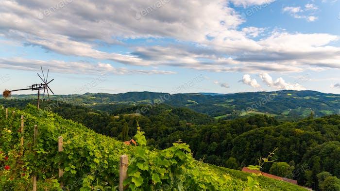 Austria, south styria travel destination. Tourist spot for vine