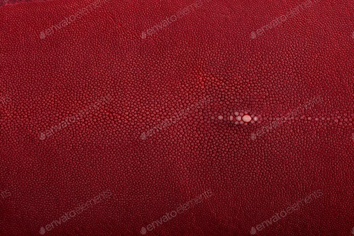 Stingray skin, leather in red color