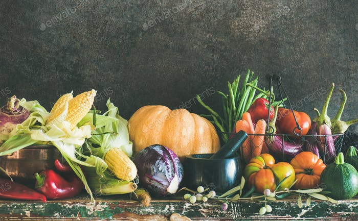 Assortment of various Autumn vegetables for healthy cooking, copy space