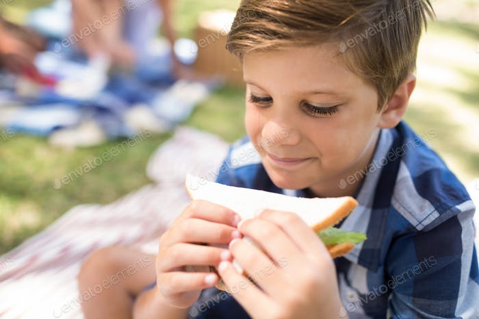 Boy having sandwich in picnic at park