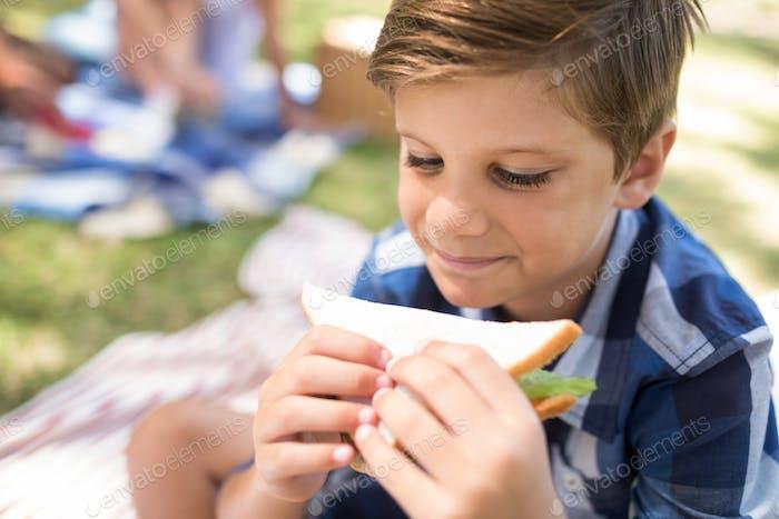 Junge mit Sandwich im Picknick im Park