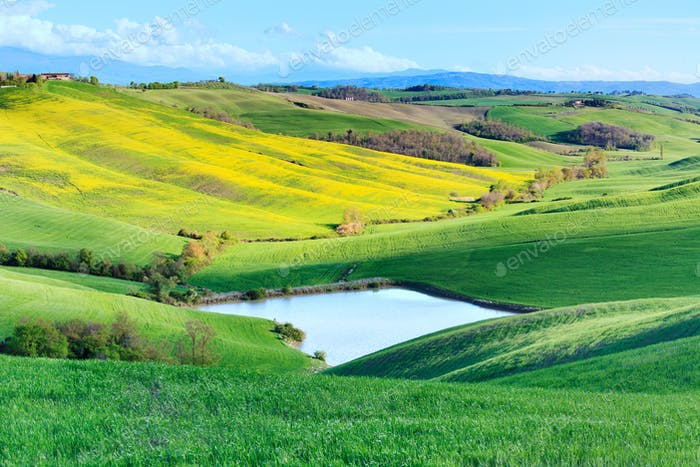 Tuscany, Crete Senesi rural landscape, Italy. Lake green yellow