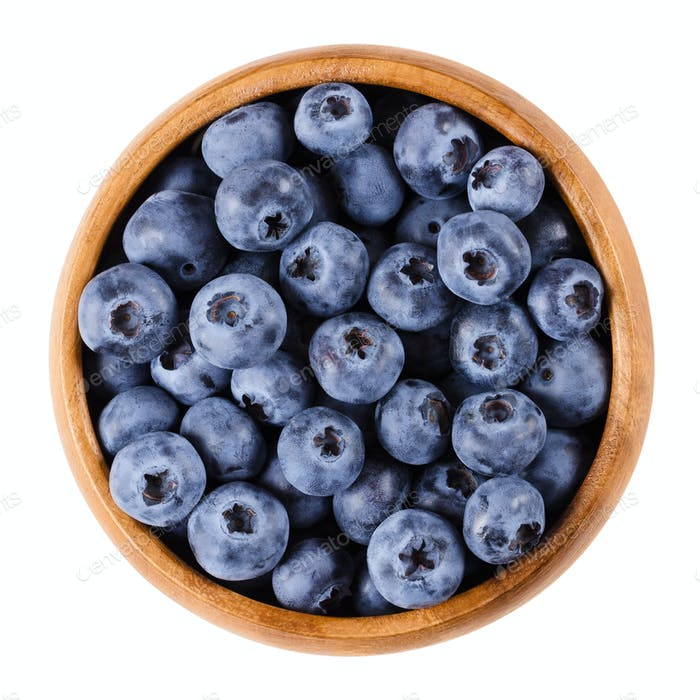 Blueberries in a bowl over white