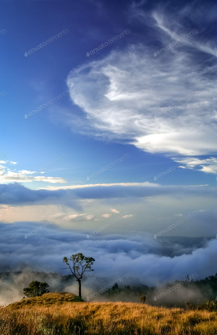 View From Gunung Rinjani