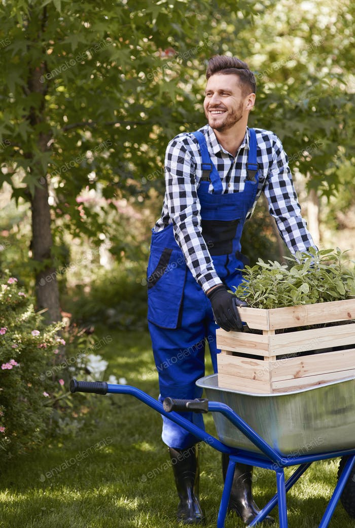 Cheerful gardener planting seedling