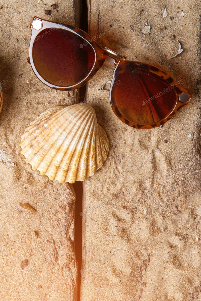Girl's sunglasses and seashell