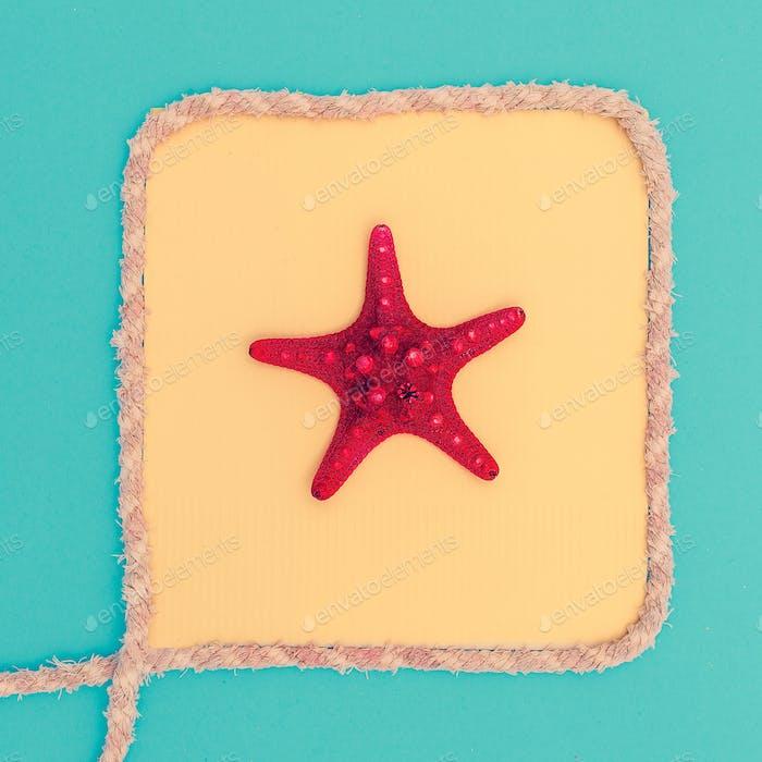 Starfish in a frame. Beach style. Minimal