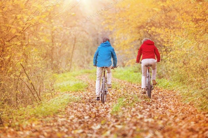 Aktive Senioren Reiten Fahrrad