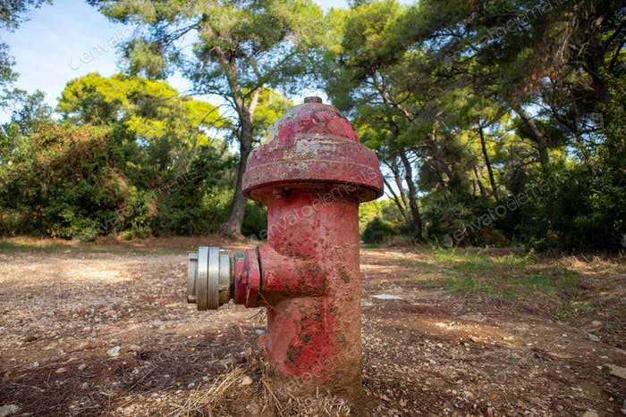 Firefighting public system fire hydrant red color outdoors in forest background.