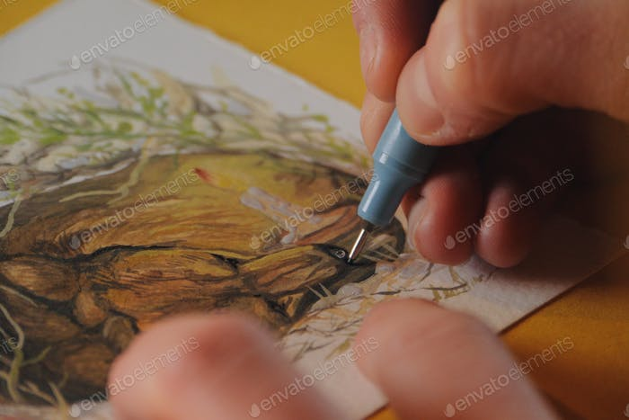 female artist painter paiting a watercolor picture of a bear-art is property released