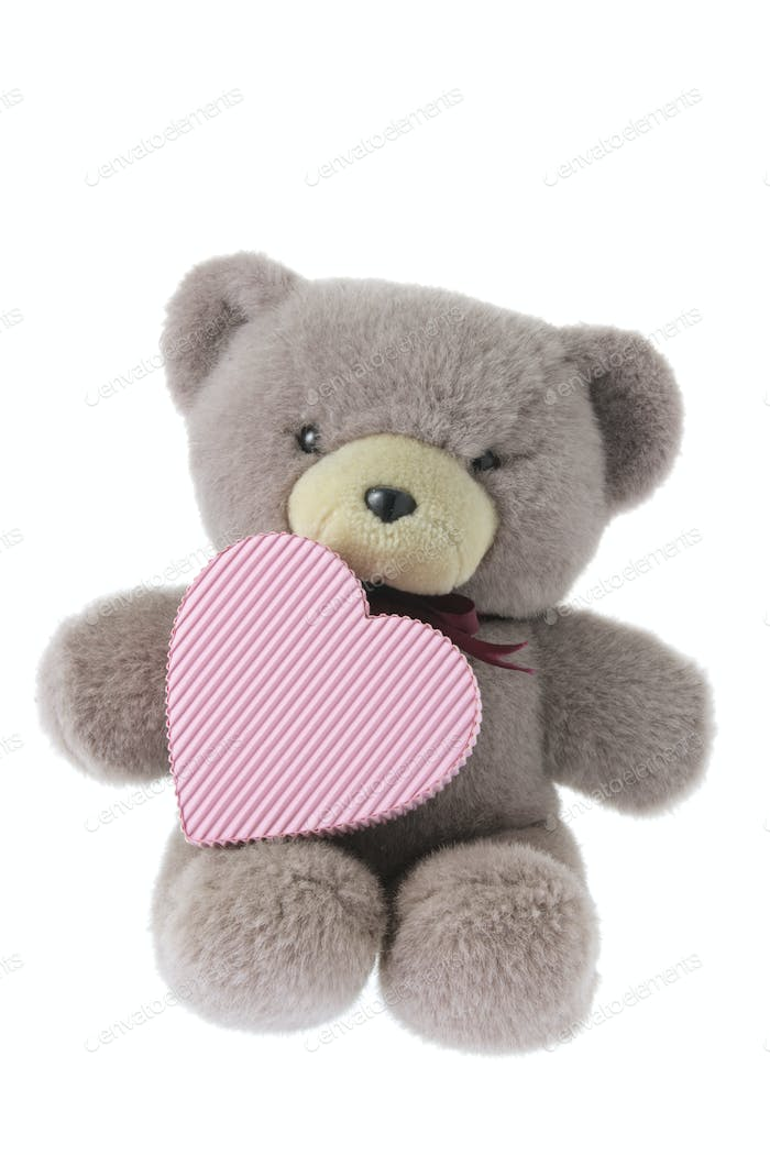 Teddy Bear with Gift Box