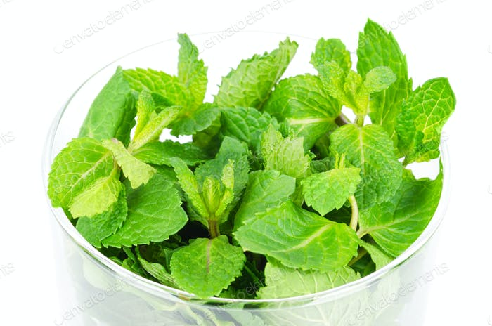 Fresh peppermint leaves in glass bowl over white