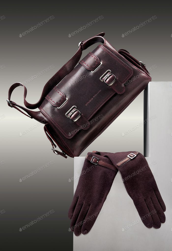 Brown handbag and gloves