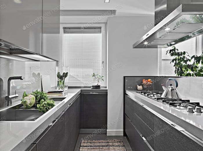 Modern Kitchen Interior with Island Kitchen