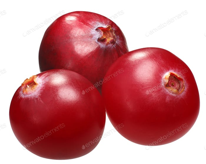 Three cranberries v. oxycoccs, paths