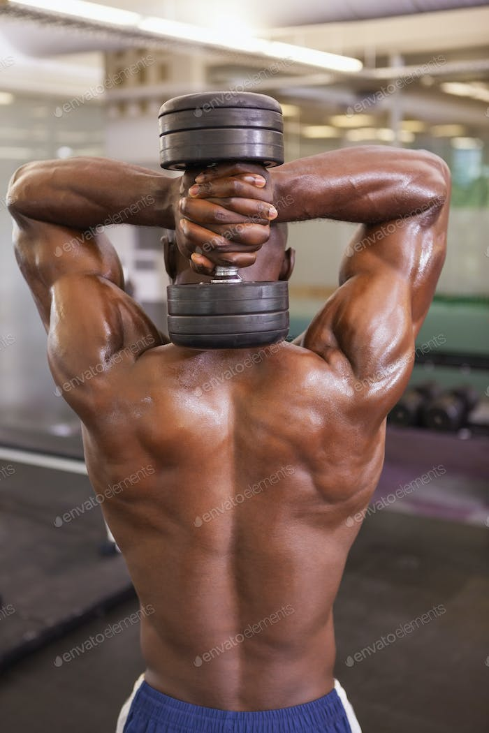 Shirtless young muscular man exercising with dumbbell in gym