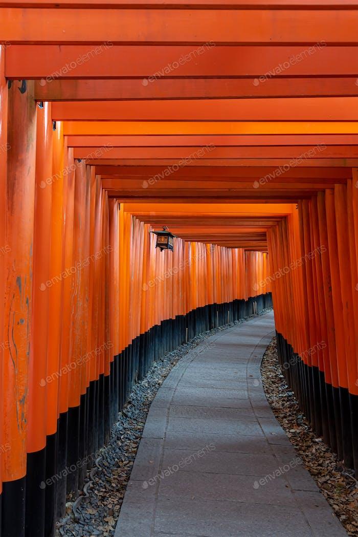 Fushimi Inari Schrein Tore, Kyoto