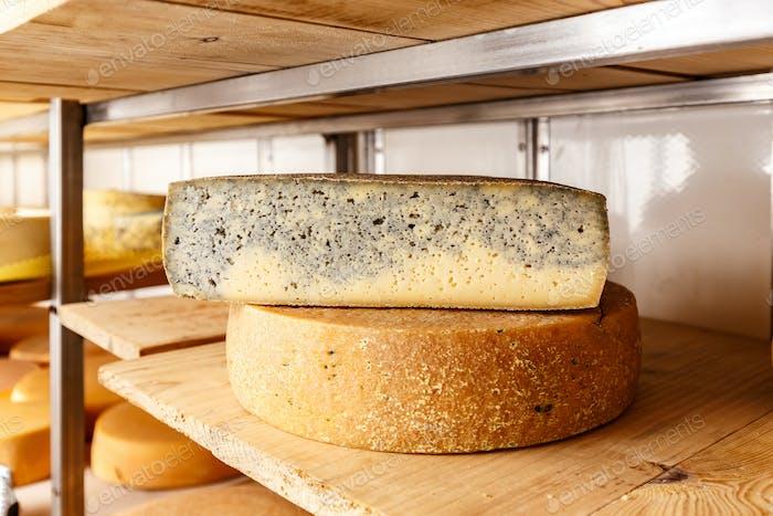 Half cheese wheel