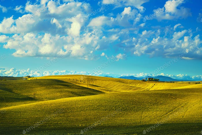 Tuscany countryside panorama, rolling hills and fields on sunset