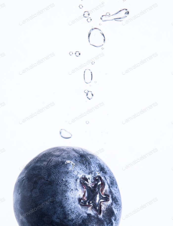 One Organic Blueberry sinking into water with air bubbles white background. Macro detailed closeup