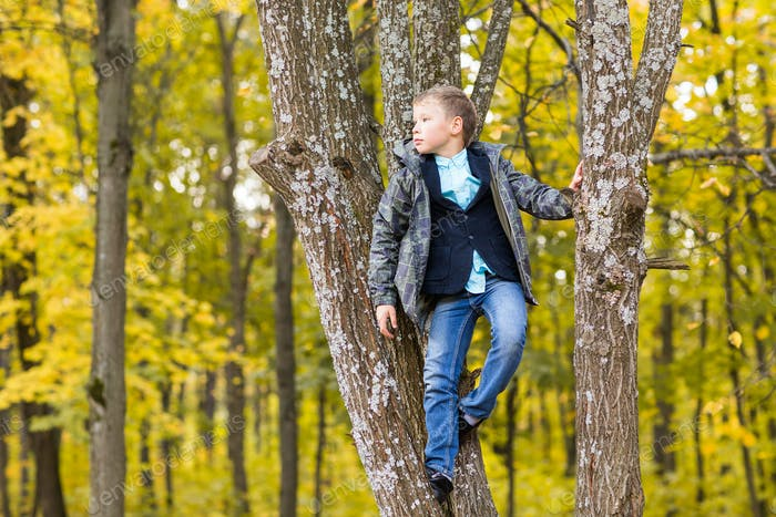 Cute teenager boy sitting on a branch of tree in autumn park