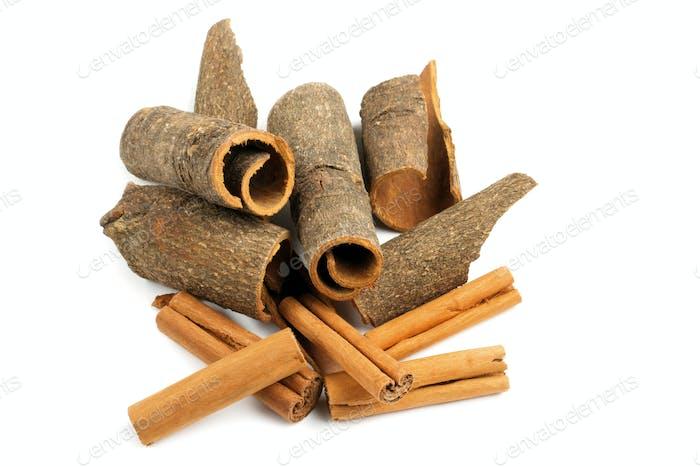 variety of cinnamon