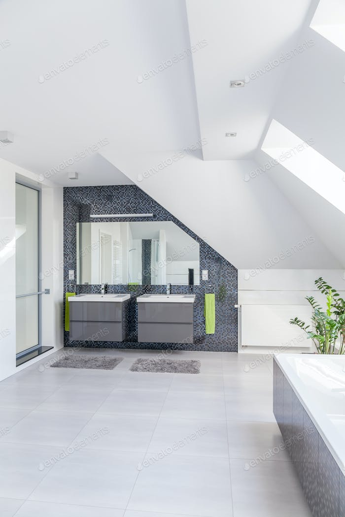 Bright spacious bathroom