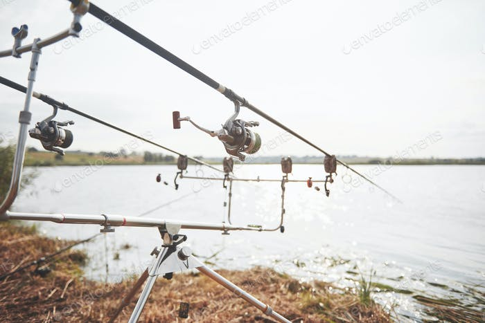 Carp fishing rods standing on special tripods. Expensive coils and a radio system of crochet