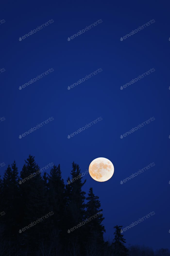 A full moon in a dark blue night sky.